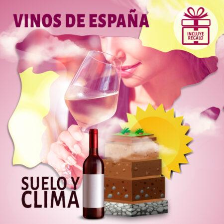 Curso online de los Vinos de España
