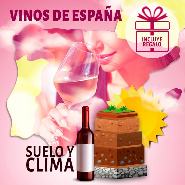 Vinos-de-España-aromas