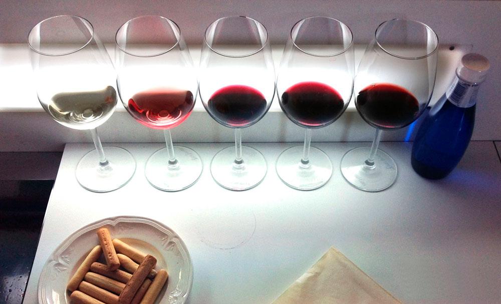 aprender de vinos