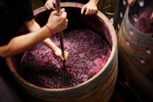 elaborar-vino-casero