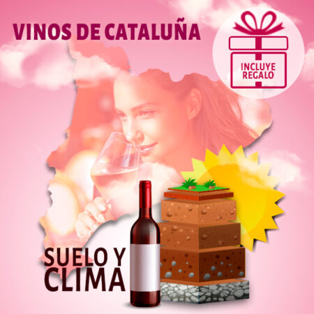 Curso online de los Vinos de Cataluña