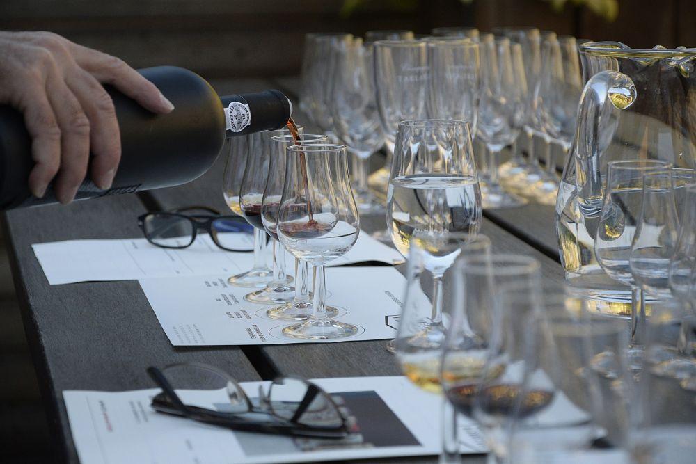 mejor vino para principiantes