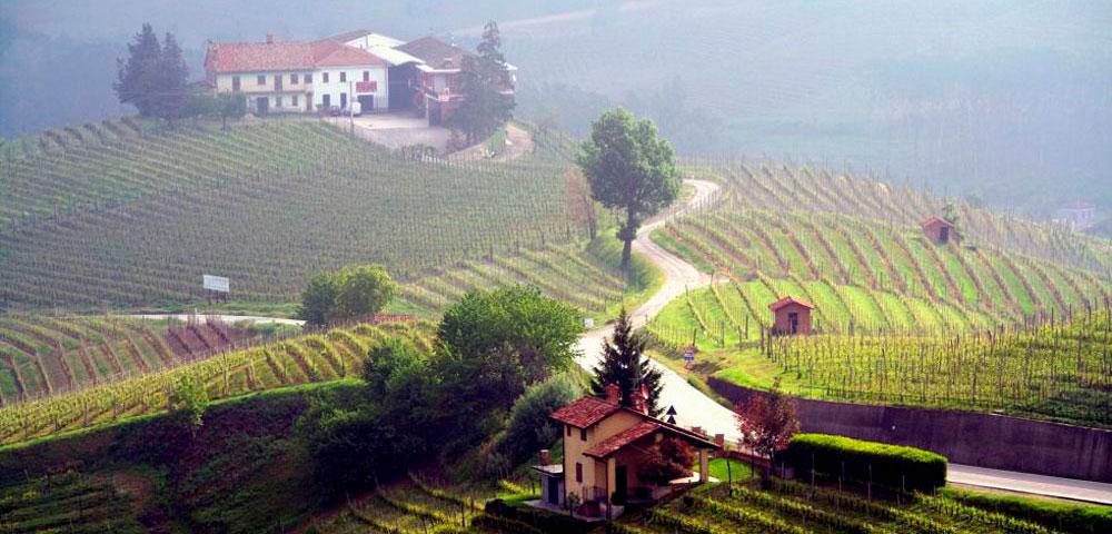 vino-pandemia-italia